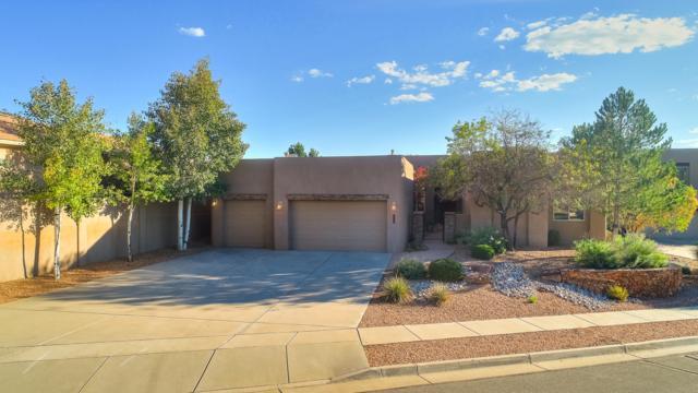 13212 Twilight Trail Place, Albuquerque, NM 87111 (MLS #928647) :: Your Casa Team