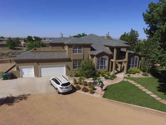 11600 Ranchitos Road NE, Albuquerque, NM 87122 (MLS #931949) :: Your Casa Team