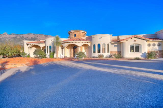 10896 Elena Avenue NE, Albuquerque, NM 87122 (MLS #932381) :: The Bigelow Team / Realty One of New Mexico
