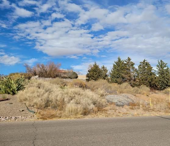 Valley View Drive, Los Lunas, NM 87031 (MLS #932764) :: The Buchman Group