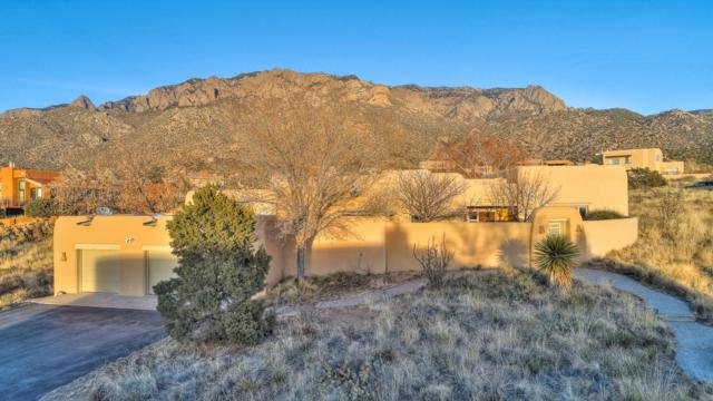 207 Live Oak Road NE, Albuquerque, NM 87122 (MLS #933734) :: The Bigelow Team / Realty One of New Mexico