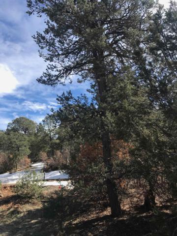 8 Cavaletti Court, Tijeras, NM 87059 (MLS #934237) :: Berkshire Hathaway HomeServices Santa Fe Real Estate