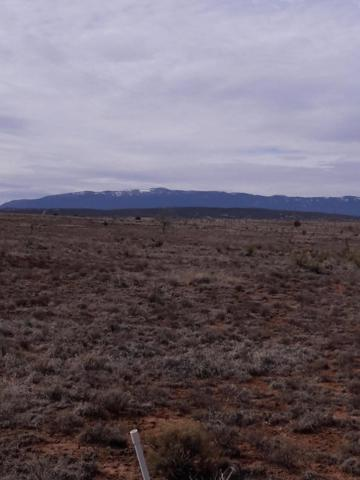 6 Jazmin Court, Edgewood, NM 87015 (MLS #934887) :: Campbell & Campbell Real Estate Services