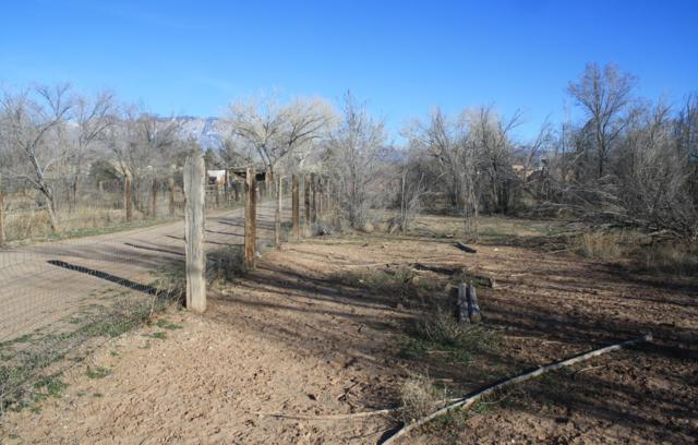 142 Reed Lane, Corrales, NM 87048 (MLS #934949) :: Campbell & Campbell Real Estate Services