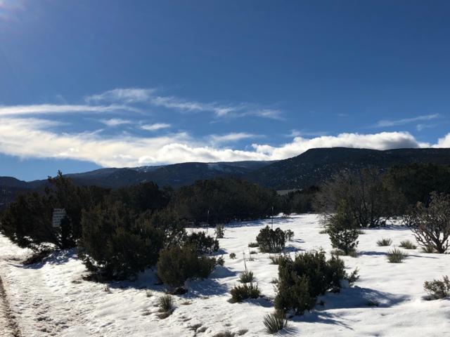 Pinion Park, Sandia Park, NM 87047 (MLS #935027) :: The Bigelow Team / Red Fox Realty