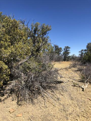Lots 5-6 Ridges - Candy Kitchen Road, Ramah, NM 87321 (MLS #935909) :: The Bigelow Team / Realty One of New Mexico