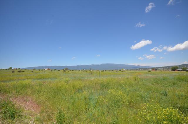 1153 Mountain Valley Road, Sandia Park, NM 87047 (MLS #936192) :: The Buchman Group