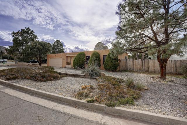 1029 Santa Ana Avenue SE, Albuquerque, NM 87123 (MLS #936213) :: Your Casa Team