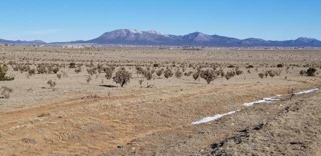 Thompson Road, Moriarty, NM 87035 (MLS #936573) :: The Buchman Group