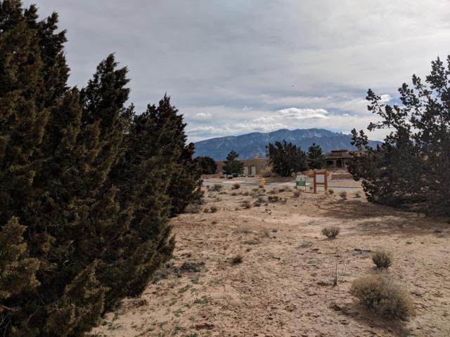 6915 Nacelle Road NE, Rio Rancho, NM 87144 (MLS #936647) :: Campbell & Campbell Real Estate Services