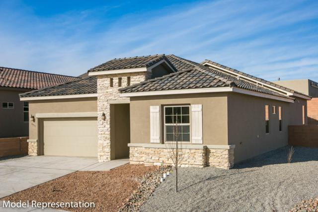 4093 Mountain Trail Loop NE, Rio Rancho, NM 87144 (MLS #936803) :: Campbell & Campbell Real Estate Services