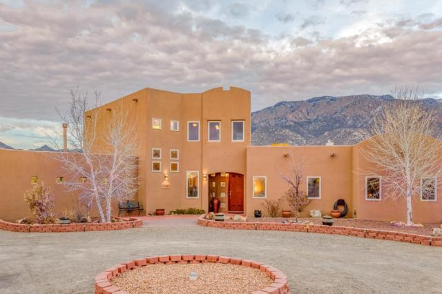 11605 Holly Avenue NE, Albuquerque, NM 87122 (MLS #937288) :: Your Casa Team