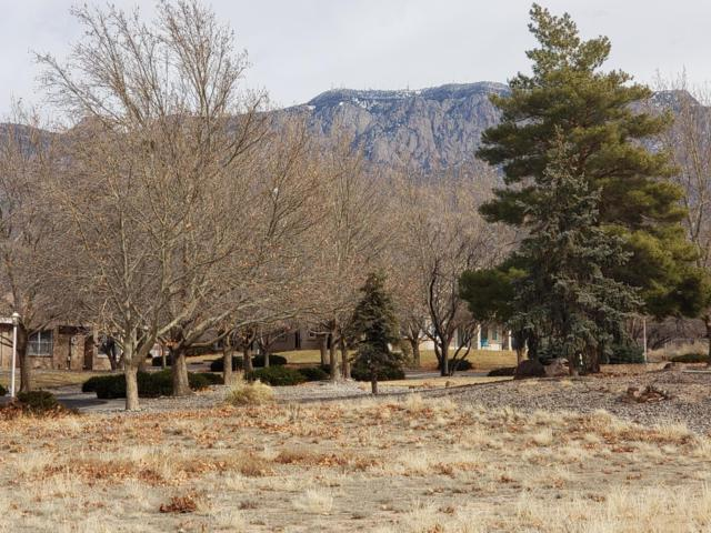 10004 San Bernardino Avenue NE, Albuquerque, NM 87122 (MLS #937498) :: Campbell & Campbell Real Estate Services