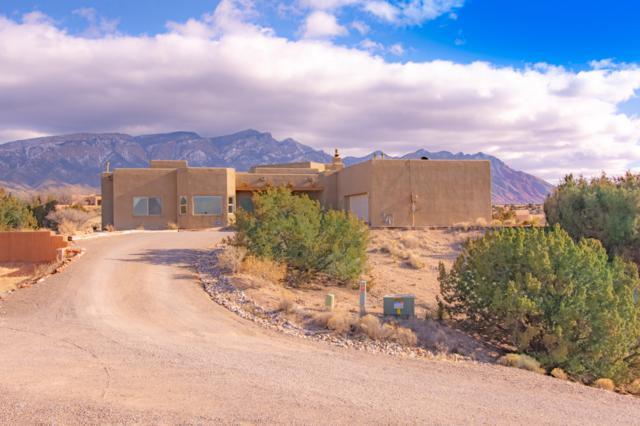 5 Solar Court, Placitas, NM 87043 (MLS #937602) :: Your Casa Team