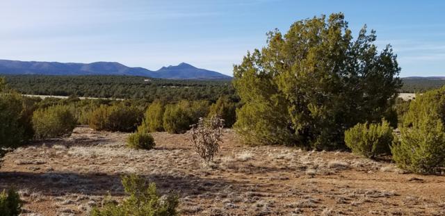 Nm 55 Highway, Torreon, NM 87061 (MLS #937805) :: Keller Williams Realty