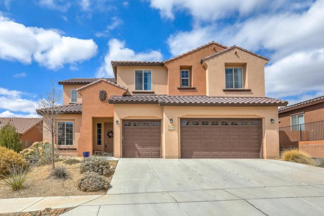 31 Vista Larga Place NE, Rio Rancho, NM 87124 (MLS #937822) :: The Bigelow Team / Realty One of New Mexico