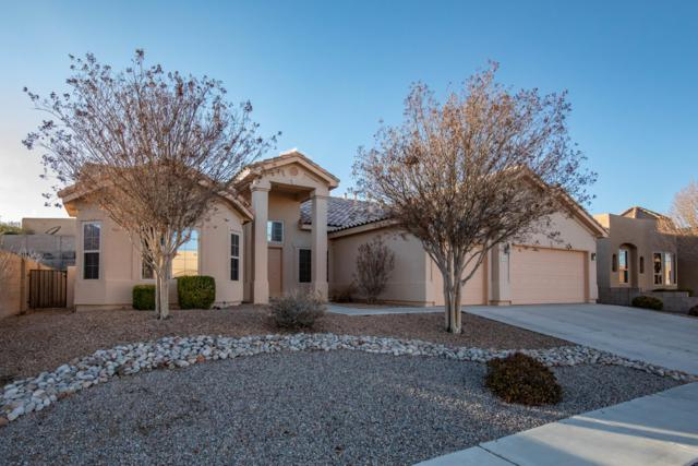 2309 Arroyo Falls Street NW, Albuquerque, NM 87120 (MLS #938280) :: Campbell & Campbell Real Estate Services