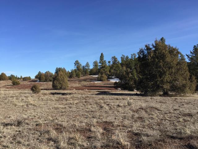 Lot 7 Black Bear Road, Ramah, NM 87321 (MLS #938699) :: The Bigelow Team / Red Fox Realty