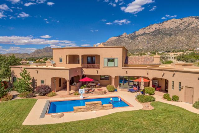 9106 Lynx Loop NE, Albuquerque, NM 87122 (MLS #938839) :: Campbell & Campbell Real Estate Services