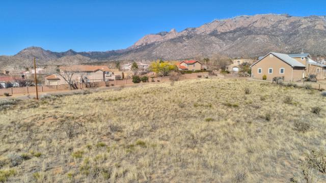 12228 Anaheim Avenue NE, Albuquerque, NM 87122 (MLS #939053) :: Campbell & Campbell Real Estate Services