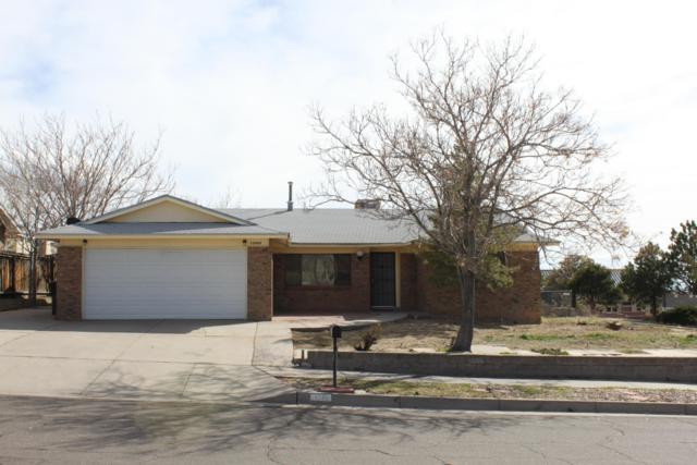 12908 El Vado Avenue NE, Albuquerque, NM 87112 (MLS #939301) :: The Bigelow Team / Realty One of New Mexico