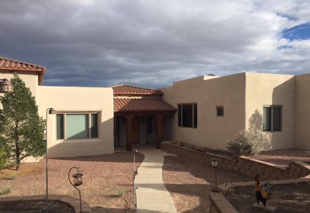 517 Albino Road, Corrales, NM 87048 (MLS #939418) :: The Bigelow Team / Realty One of New Mexico