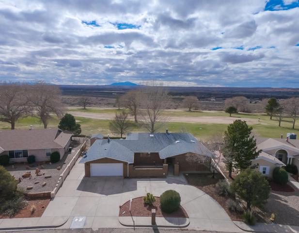809 Lee Trevino Drive, Rio Communities, NM 87002 (MLS #939722) :: Campbell & Campbell Real Estate Services