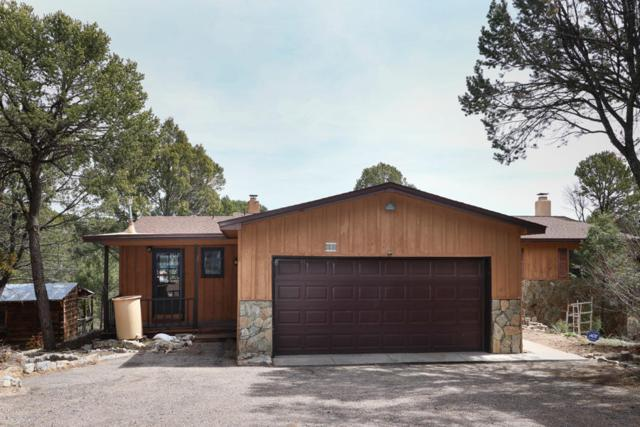 18 Forest Park Road, Cedar Crest, NM 87008 (MLS #940768) :: Campbell & Campbell Real Estate Services