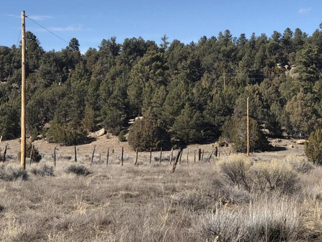 Lot 64 Ash - Unit 2 Block 1 Drive, Ramah, NM 87321 (MLS #941285) :: The Buchman Group