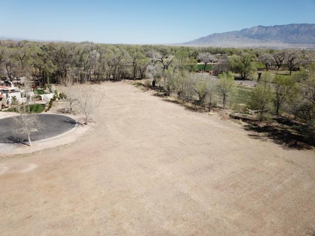6901 Rio Grande Boulevard, Los Ranchos, NM 87107 (MLS #942018) :: The Bigelow Team / Realty One of New Mexico