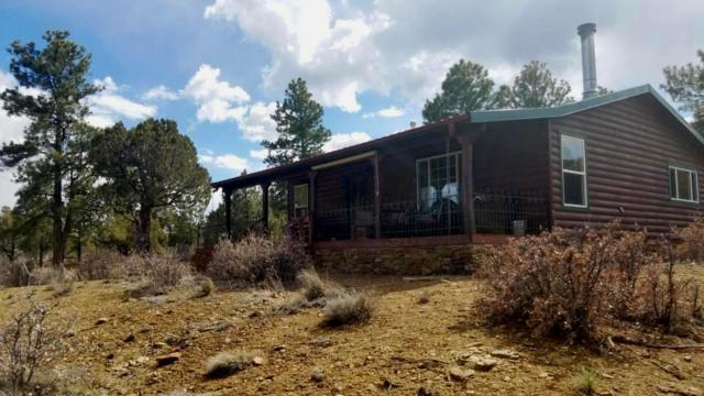 36 Dove Valley Road, Pie Town, NM 87827 (MLS #942529) :: The Bigelow Team / Red Fox Realty