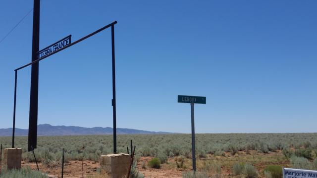 Tierra Grande Hwy 47 & Leroux, Belen, NM 87002 (MLS #943910) :: Campbell & Campbell Real Estate Services