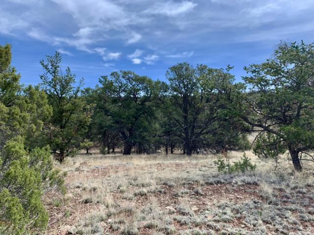 161 Homestead Subdivision Trail, Datil, NM 87821 (MLS #944579) :: Silesha & Company