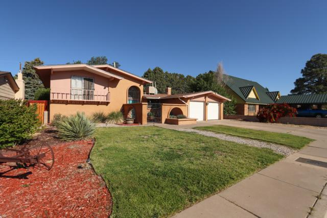 2905 Indiana Street NE, Albuquerque, NM 87110 (MLS #944851) :: Campbell & Campbell Real Estate Services