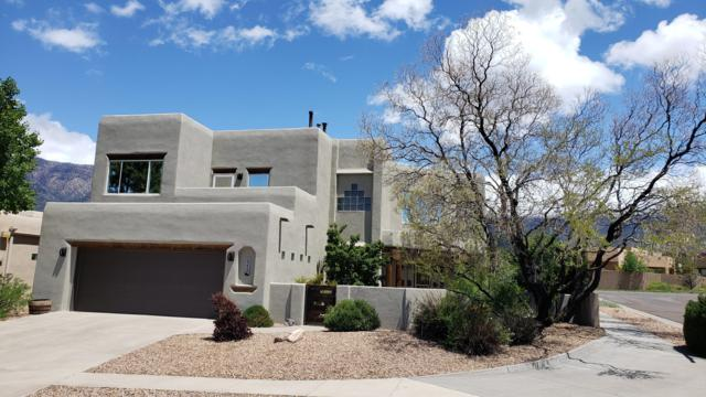 6224 Abiquiu Place NE, Albuquerque, NM 87111 (MLS #944876) :: The Bigelow Team / Realty One of New Mexico