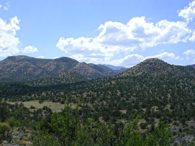 Forest Road 157, Winston, NM 87943 (MLS #945024) :: Silesha & Company
