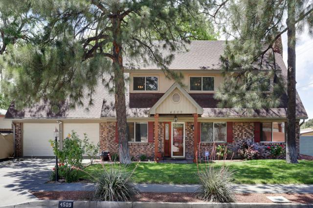 4509 Dona Marguerita Avenue NE, Albuquerque, NM 87111 (MLS #945137) :: The Bigelow Team / Realty One of New Mexico