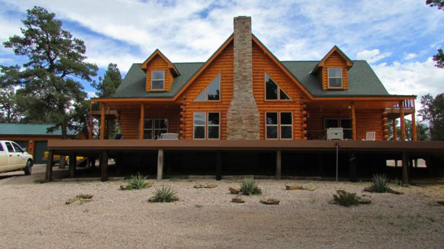 12 Dancing Eagle Road, Ramah, NM 87321 (MLS #945643) :: Campbell & Campbell Real Estate Services
