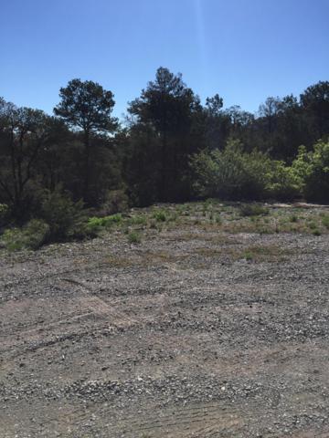 13/15 Las Nietas Court, Edgewood, NM 87015 (MLS #945647) :: The Buchman Group