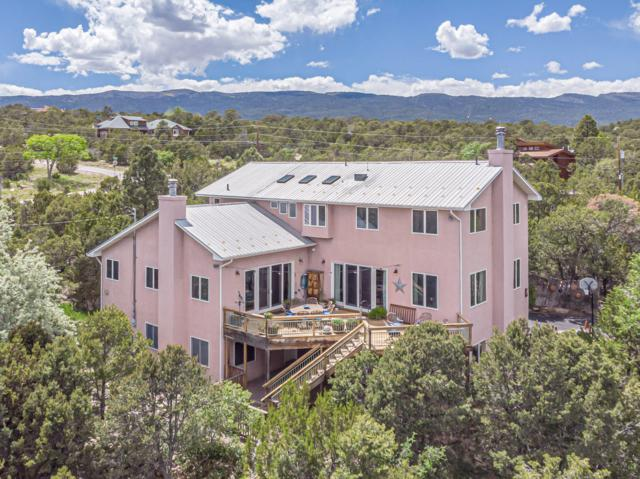 19 Sierra Vista Drive, Cedar Crest, NM 87008 (MLS #945831) :: Campbell & Campbell Real Estate Services
