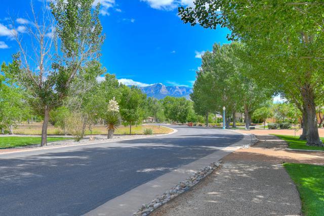 674 Camino Vista Rio, Bernalillo, NM 87004 (MLS #945870) :: Campbell & Campbell Real Estate Services