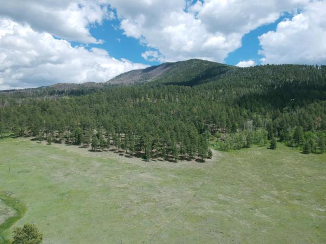 Amber Way, Jemez Springs, NM 87025 (MLS #946163) :: Campbell & Campbell Real Estate Services