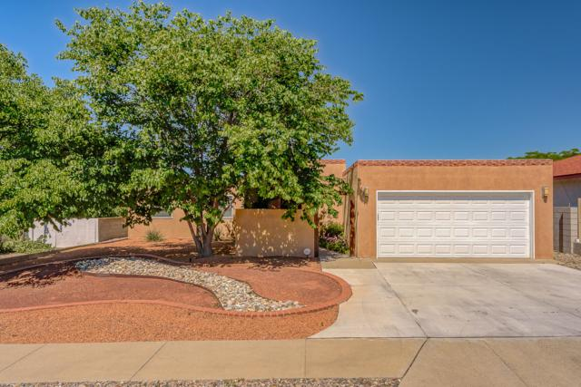 7005 Red Sky Court NE, Albuquerque, NM 87111 (MLS #946222) :: The Bigelow Team / Realty One of New Mexico