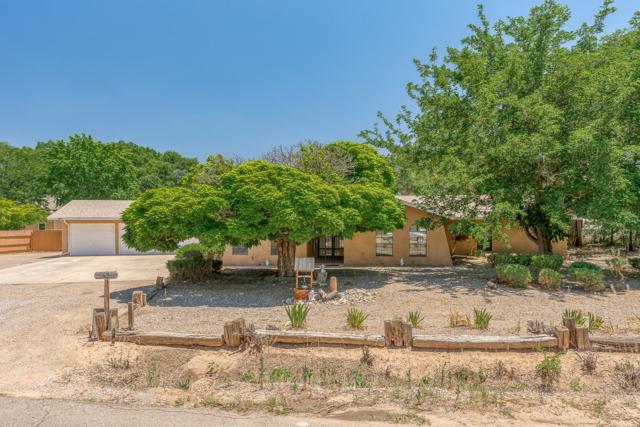 64 Caminito Alegre, Corrales, NM 87048 (MLS #946494) :: Campbell & Campbell Real Estate Services