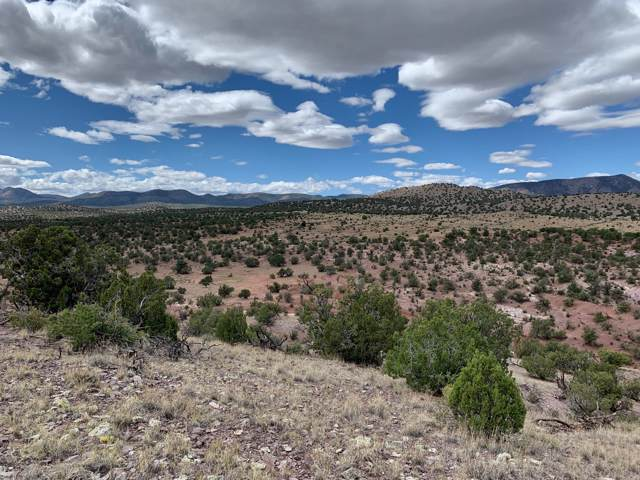 9 Pinon Springs Ranches, Magdalena, NM 87825 (MLS #947071) :: Keller Williams Realty