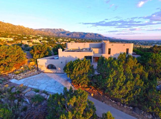 203 Spring Creek Drive NE, Albuquerque, NM 87122 (MLS #947479) :: Silesha & Company