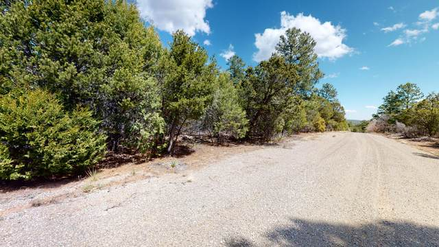 9 Secret Pines Place, Tijeras, NM 87059 (MLS #947990) :: The Bigelow Team / Red Fox Realty