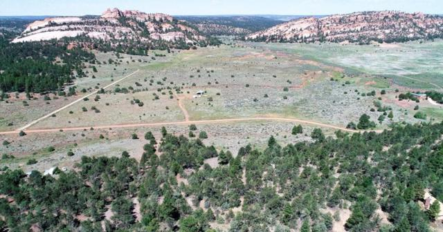 112 Box S Ranch Road, Ramah, NM 87321 (MLS #948469) :: Silesha & Company