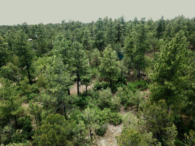 21 Mockingbird Drive, Tijeras, NM 87059 (MLS #948824) :: Campbell & Campbell Real Estate Services