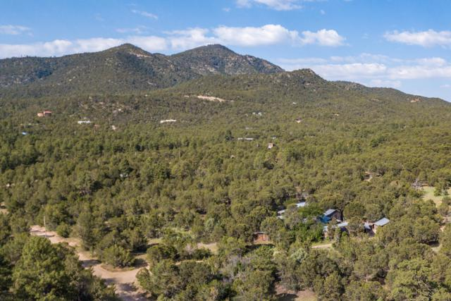 14A Camino Del Corazon, Sandia Park, NM 87047 (MLS #950622) :: Campbell & Campbell Real Estate Services